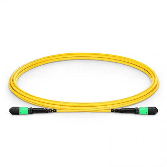 2m (7ft) MTP Female 12 Fibers Type B Plenum (OFNP) OS2 9/125 Single Mode Elite Trunk Cable, Yellow