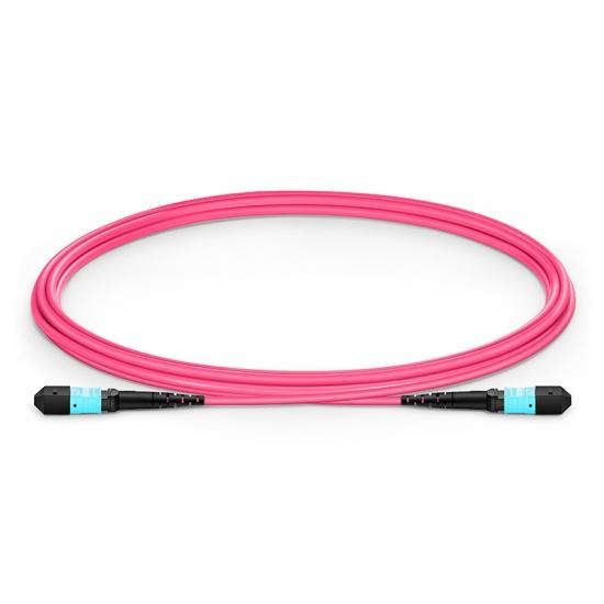 2m 12芯 MTP(母)万兆多模OM4主干光纤跳线, 极性B,低插损,Plenum(OFNP阻燃)