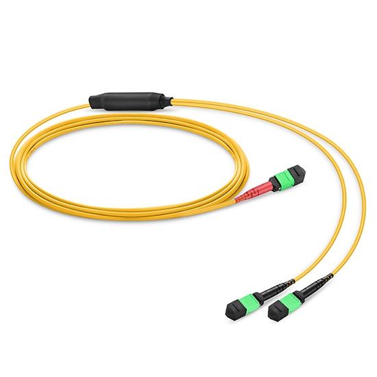 24芯 MTP 单模(OS2) 束状扇出型转换光纤跳线,LSZH