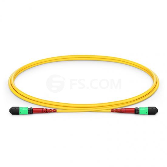 1M 24芯 MTP®(母)单模OS2主干光纤跳线,100GBASE-SR10 CXP/CFP/CPAK, 极性 A (TIA-568),低插损,Plenum (OFNP阻燃)