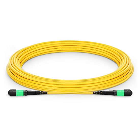 Customized Length MTP Male 12 Fibers Type A LSZH OS2 9/125 Single Mode Elite Trunk Cable, Yellow