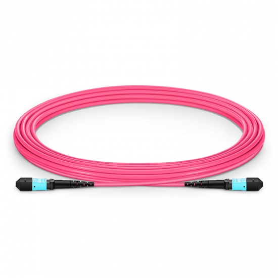 5m (16ft) MTP Female 12 Fibers Type B Plenum (OFNP) OM4 (OM3) 50/125 Multimode Elite Trunk Cable, Magenta