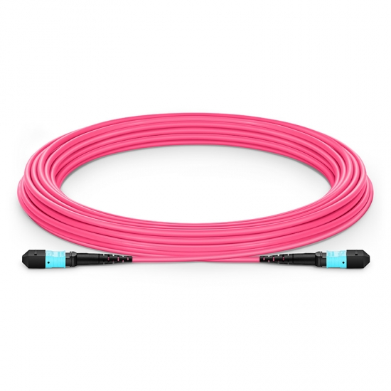 20m (66ft) MTP Female 12 Fibers Type B Plenum (OFNP) OM4 (OM3) 50/125 Multimode Elite Trunk Cable, Magenta