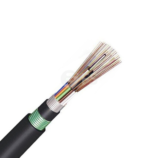 24 Fibers Multimode 50/125 OM2, Double-Armored Double-Jacket, Stranded Loose Tube, Steel Wire Strength, Waterproof Outdoor  Cable GYTA53