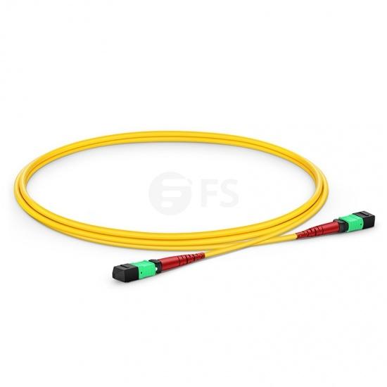 1M 24芯 MTP®(母)单模OS2主干光纤跳线,CPAK-10x10G-LR , 极性 A (TIA-568),低插损,LSZH