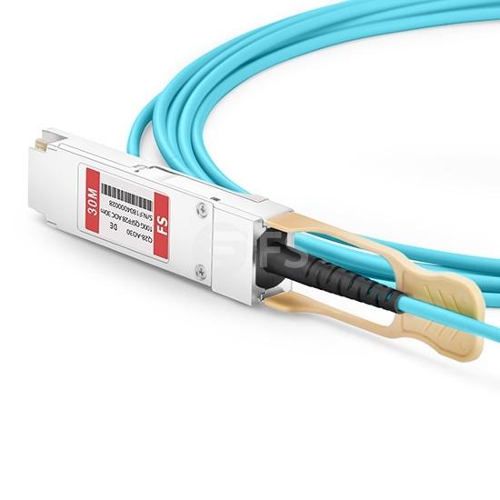 30m 戴尔(Dell)兼容Dell AOC-QSFP28-100G-30M QSFP28 转 QSFP28 有源光缆