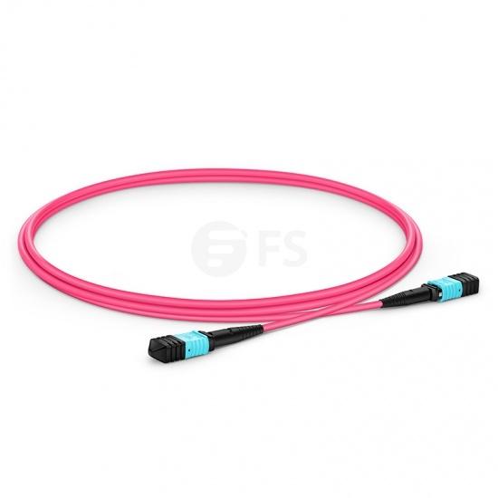 1M 12芯 MPO(母)万兆多模OM4主干光纤跳线,极性B ,低插损,LSZH