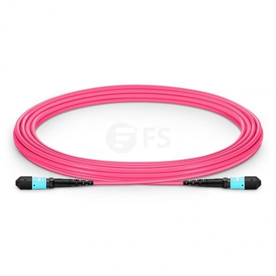 5m (16ft) MTP®-12 (Female) to MTP®-12 (Female) OM4 Multimode Elite Trunk Cable, 12 Fibers, Type B, Plenum (OFNP), Magenta