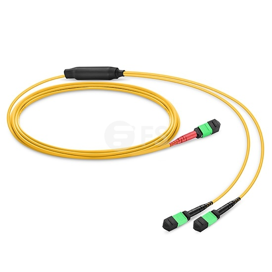 Customised MTP® 24 Fibres OS2 Single Mode Conversion Harness Cable