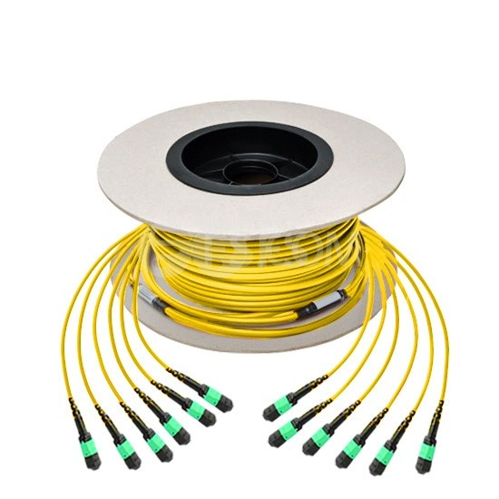 Cable troncal de fibra óptica 6m (20ft) MTP® hembra a hembra 72 fibras OS2 9/125 monomodo, tipo A, Élite, LSZH, amarillo