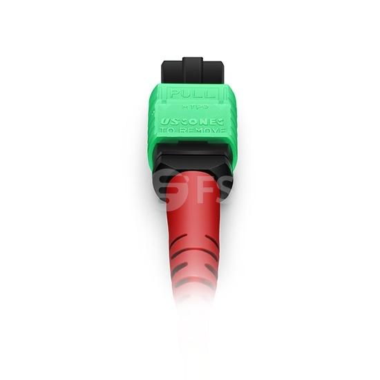 5M 24芯 MTP®(母)单模OS2主干光纤跳线,100GBASE-SR10 CXP/CFP/CPAK, 极性 A (TIA-568),低插损,Plenum (OFNP阻燃)