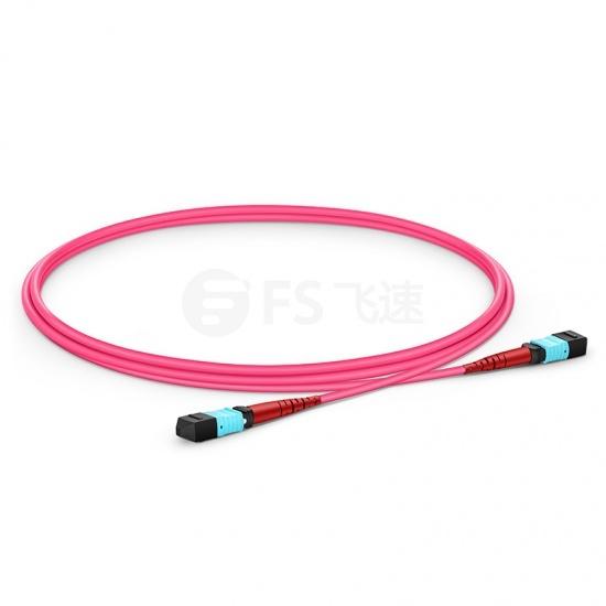 1M 24芯 MTP®(母)万兆多模OM4 (OM3)主干光纤跳线,100GBASE-SR10 CXP/CFP/CPAK, 极性 A (TIA-568),低插损,Plenum (OFNP阻燃)