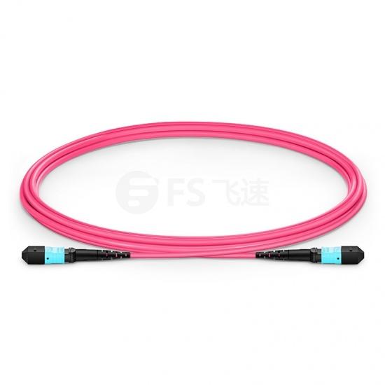 2m 12芯 MTP®(母)万兆多模OM4主干光纤跳线, 极性B,低插损,Plenum(OFNP阻燃)