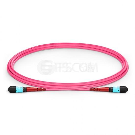 2M 24芯 MTP®(母)万兆多模OM4 (OM3)主干光纤跳线,100GBASE-SR10 CXP/CFP/CPAK, 极性 A (TIA-568),低插损,Plenum (OFNP阻燃)