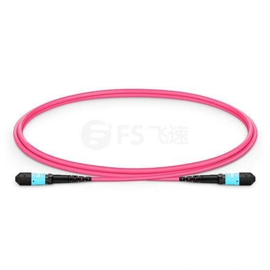 1m 12芯 MTP(母)万兆多模OM4主干光纤跳线,极性B,低插损,Plenum (OFNP阻燃)