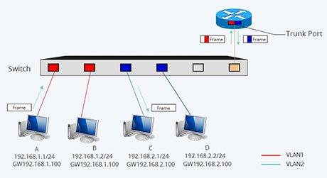 Switch Mac Basis  Switch Mac Address Table Basis | FS